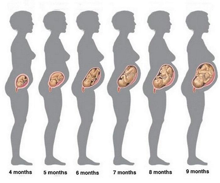 20-недели беременности