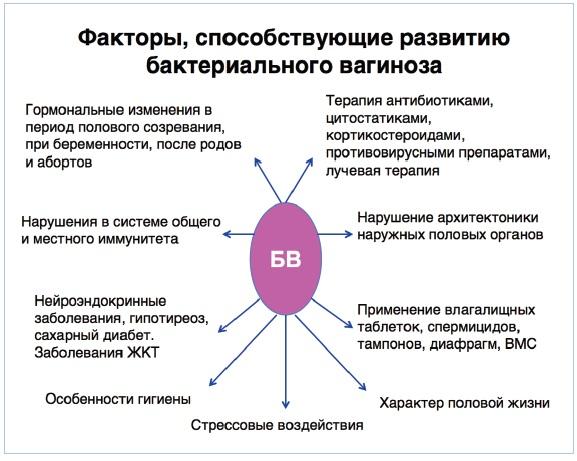 bakterialniy-vaginoz-deystvie-na-seksualnogo-partnera