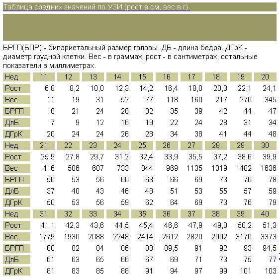 Желтое тело при беременности размеры по неделям таблица
