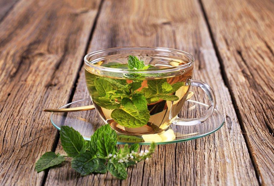 Можно ли чай с мятой при беременности