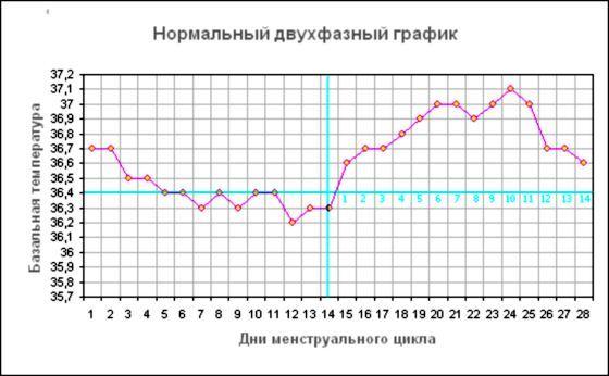 Температура тела при беременности на ранних
