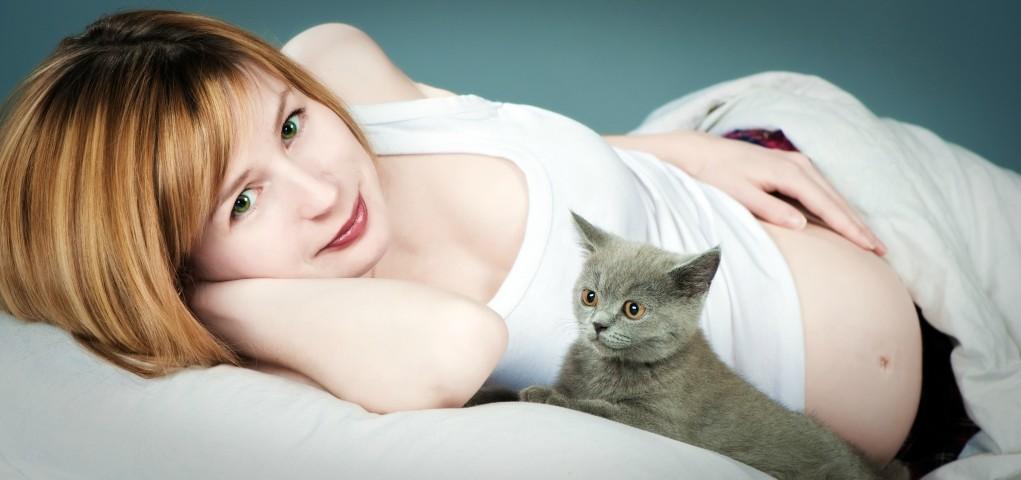 Кошачий синдром у беременных 60