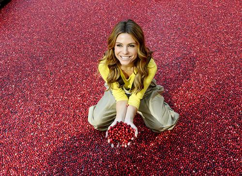 cranberries09092914-5