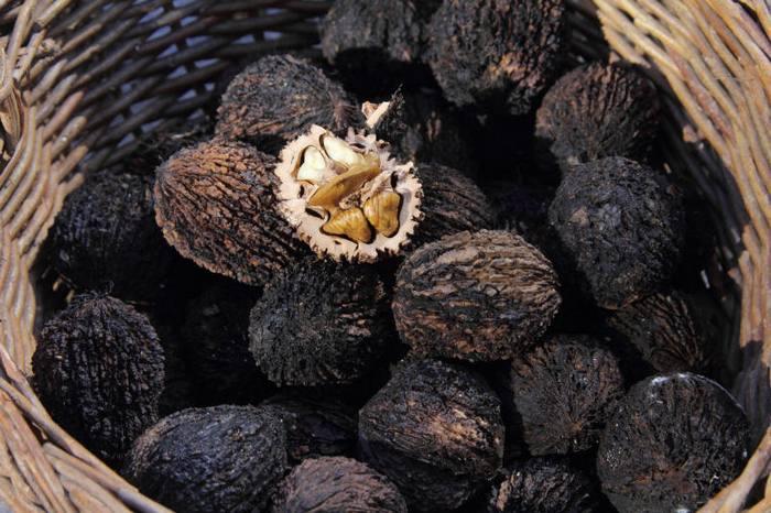 Можно ли кушать орехи при беременности thumbnail