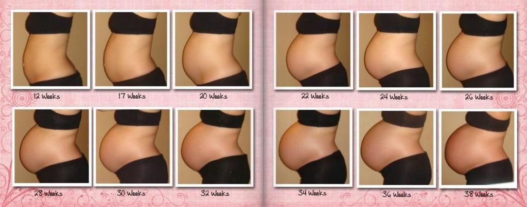 Когда виден живот при беременности